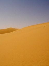 広漠な砂丘が続くウズベキスタンの砂漠の様子